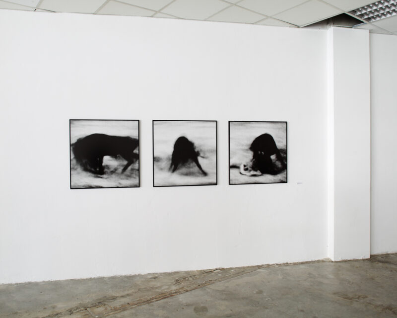 From the original motion picture — installation view